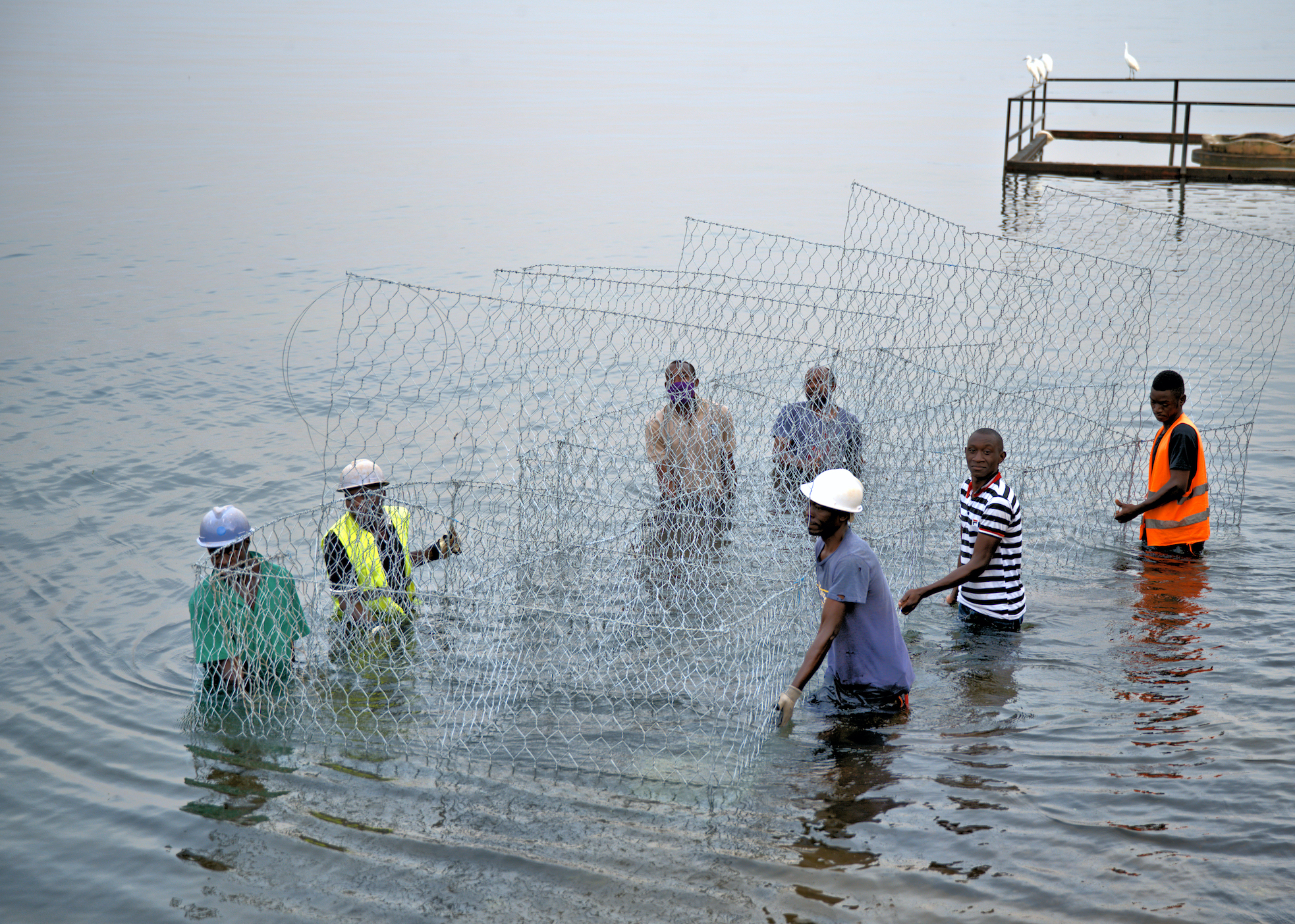 Ngamba workers and Children of Conservation board members work on construction of gabions in Lake Victoria to combat flooding.